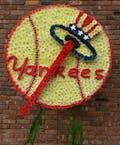 NY Yankee's Logo