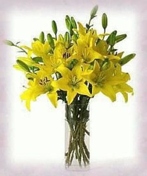 Vase of Sunshine