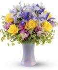 Lavender Sunshine
