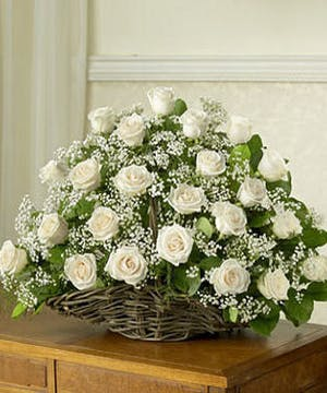 Pure White Roses