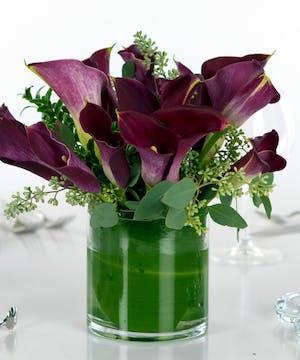 Purple Distinction