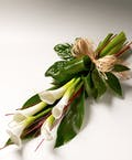 Graceful Calla Lilies