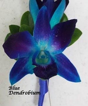 Sapphire Dendrobium Boutonniere