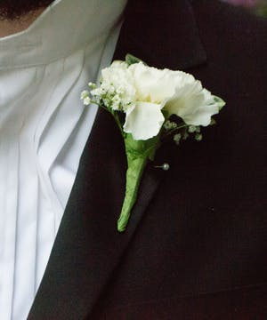 White Carnation Bout