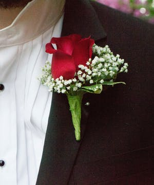 Red rose with babys breath