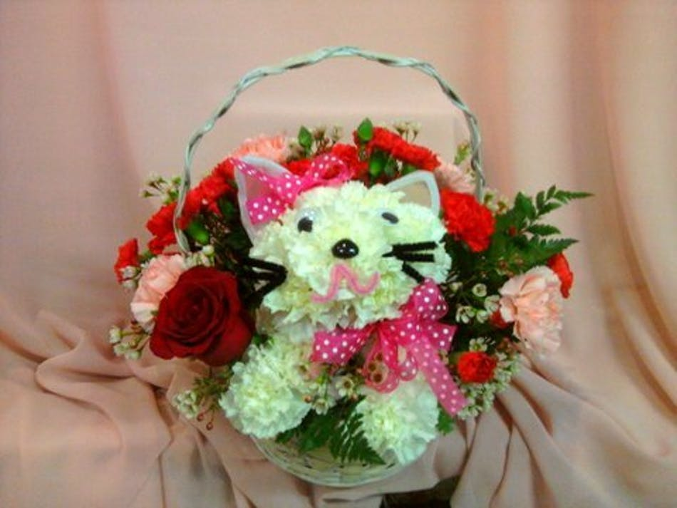 Cats are purr...fect - River Dell Flowers-Oradell Florist-Flower ...