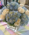 Blue Romance