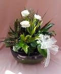 Ceramic Dish Garden 3