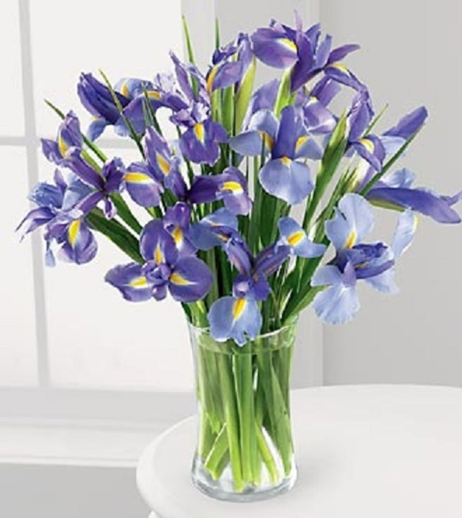 Van gogh iris river dell flowers oradell florist flower delivery available for nationwide delivery reviewsmspy