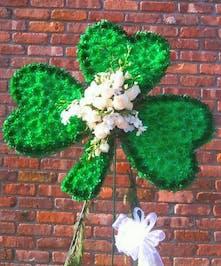 A symbol of Ireland