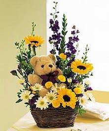 Fuzzy Wuzzy Teddy