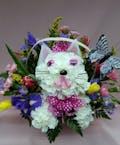 Springtime Feline