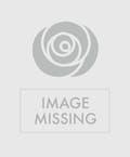 Sweet Tulips Silk Wreath