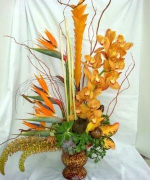 Contemporary  Tropical Arrangement