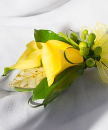 Double Yellow Calla Lily