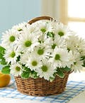 Country Daisy Basket